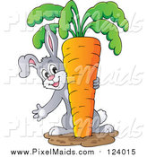 Clipart of a Bunny Rabbit Pulling a Giant Carrot by Visekart