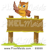 Clipart of a Smart Owl Pointing on a Sign by Graphics RF