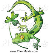 Clipart of a St Patricks Day Green Gecko Biting a Shamrock by Zooco