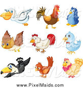 Clipart of Birds by Graphics RF