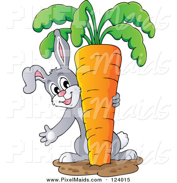 Clipart of a Bunny Rabbit Pulling a Giant Carrot