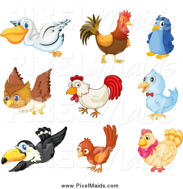 Clipart of Birds
