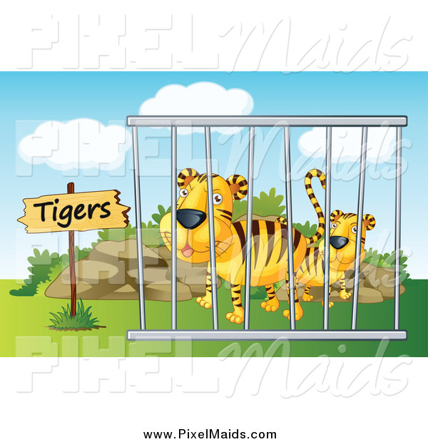 Clipart of Caged Zoo Tigers