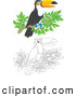 Clipart of a Happy Outlined and Colored Toucan Bird Perched on a Branch by Alex Bannykh