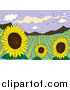 Clipart of a Sunflower Field Crop in a Valley by Graphics RF